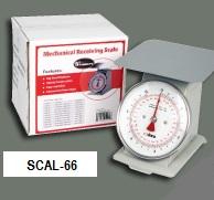 Escala Modelo SCAL-66